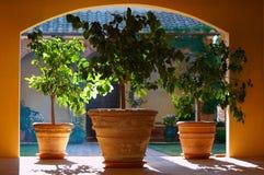 Interior de Toscanian Foto de archivo libre de regalías