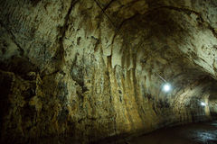 Interior de um tubo de lava em Galápagos Imagens de Stock Royalty Free