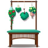 Interior decor with hanging plants and flowers.  Royalty Free Stock Images