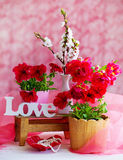 Interior decoration with red flowers and love word Royalty Free Stock Photos