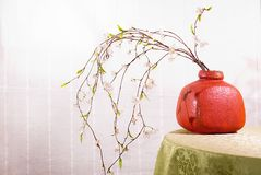 Interior decoration with zen ambiance Royalty Free Stock Images