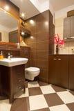 Interior del cuarto de baño con los azulejos marrones y amarillentos Fotos de archivo libres de regalías