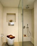 Interior design - bathroom. Master bathroom with shower screen Stock Photography