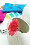 Interior design, gerber daisy, flower in a white vase. Royalty Free Stock Photography
