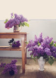 Interior design with lilac flowers Royalty Free Stock Photos
