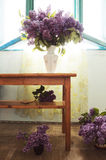 Interior design with lilac flowers in many vases and natural light Royalty Free Stock Image