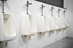 Interior Design of Men's Toilet Royalty Free Stock Images