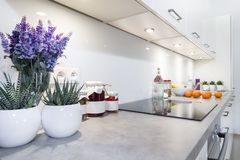 Interior design moderno della cucina Immagine Stock Libera da Diritti