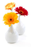 Interior design vases Stock Image