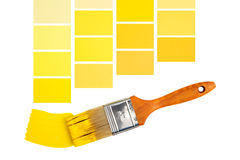 Interior Design Yellows. Designer color samples in yellow with pain brush Stock Image