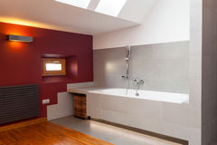 Interior of designed bathroom. Interior of a designed and modern bathroom royalty free stock photography