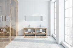Interior, dissipador e chuveiro brancos do banheiro do sótão ilustração do vetor