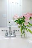 Interior do banho Fotos de Stock Royalty Free