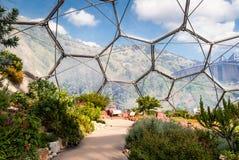 Interior do bioma mediterrâneo, Eden Project fotografia de stock