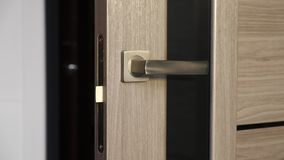 Interior doors with door handle. Modern interior door with door handle and mortise lock stock video
