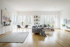 Interior elegante blanco de la sala de estar con las ventanas imagenes de archivo
