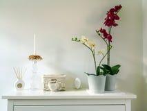 Interior elegante con una orquídea Imagen de archivo libre de regalías