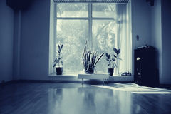 Interior empty room Royalty Free Stock Images