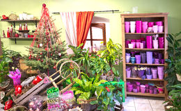 Interior of florist shop Stock Photography