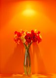 Interior flower decor. Reds, Yellows,Oranges and a splash of green make up a very colourful, striking flower arrangement royalty free stock images