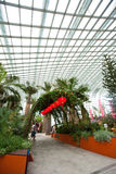 Interior of Flower Dome in Gardens by the Bay, SINGAPORE Stock Image