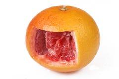 Interior Of Grapefruit Royalty Free Stock Photos