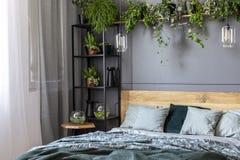 Interior gris del dormitorio con las plantas frescas en el estante del metal con la decoración Foto de archivo libre de regalías