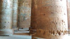 Interior hermoso del templo de Dendera o del templo de Hathor Egipto, Dendera, templo egipcio antiguo cerca del almacen de metraje de vídeo