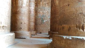 Interior hermoso del templo de Dendera o del templo de Hathor Egipto, Dendera, templo egipcio antiguo cerca del almacen de video