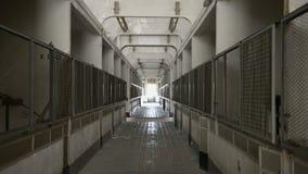 Interior industrial abandonado en oscuridad