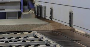 Interior industrial, fábrica da mobília, fabricação da mobília, máquina do formato para cortar o cartão, MDF, processo de filme