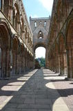 Interior of Jedburgh Abbey Royalty Free Stock Photography