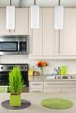 interior kitchen Στοκ Εικόνα