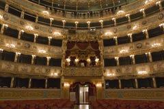 Interior of La Fenice Theatre Stock Photo