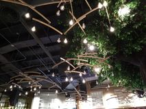 Interior lighting around a faux tree. Indoor restaurant overhead lighting. Hanging bulbs overhead royalty free stock photos