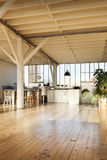 Interior loft Royalty Free Stock Photos