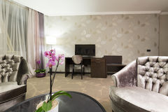 Interior of a luxury living room Royalty Free Stock Photo