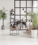 Interior mínimo blanco y negro de la cocina con la planta de pantano en pote y cosas en la mesa de centro imagenes de archivo