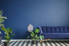 Interior mínimo del estilo con el sofá azul marino grande que se coloca en un ch foto de archivo libre de regalías