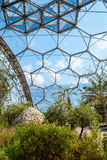 Interior of Mediterranean biome, Eden Project, vertical. Interior of Mediterranean biome, Eden Project, Cornwall, UK showing hexagonal structure of dome Stock Image