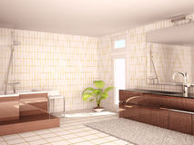 Interior of a modern bathroom Royalty Free Stock Image