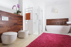 Bathroom interior with exotic wood Royalty Free Stock Images