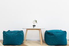 Interior modern  design. Chair and tree on table Royalty Free Stock Photography