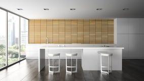 Interior of the modern design  kitchen Stock Image