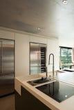 Interior modern house, kitchen Stock Photography