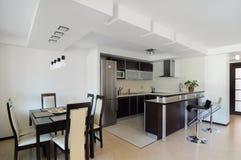Interior moderno. Cozinha Imagem de Stock Royalty Free