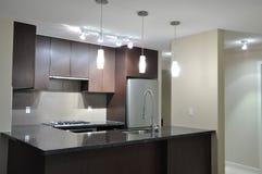 Interior moderno da cozinha Imagem de Stock Royalty Free
