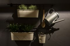 Interior moderno de la cocina Flores en potes en la pared gris Fotografía de archivo libre de regalías