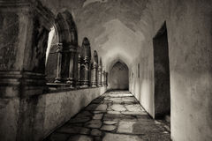 Interior of Muckross Abbey(2) Royalty Free Stock Photos