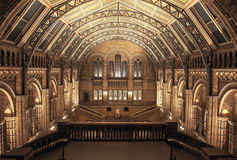 Interior of Natural History Museum, London. HDR Stock Photo